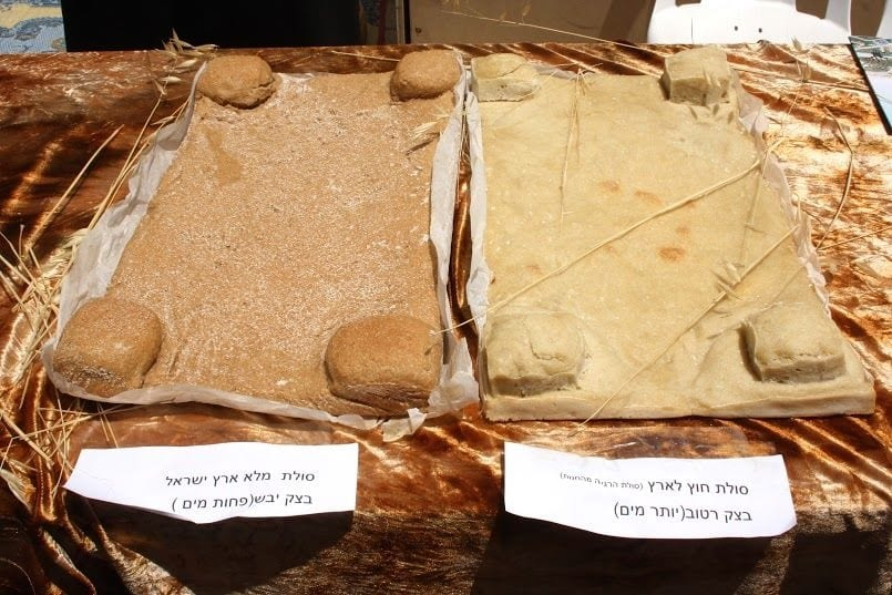 The special Two Loaves for Shavuot: the Festival of Weeks (Photo: Women for the Holy Temple)