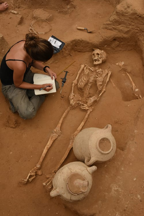 Physical anthropology member documents discovered skeleton in Ashkelon excavation. (Photo: Melissa Aja/Leon Levy Expedition)